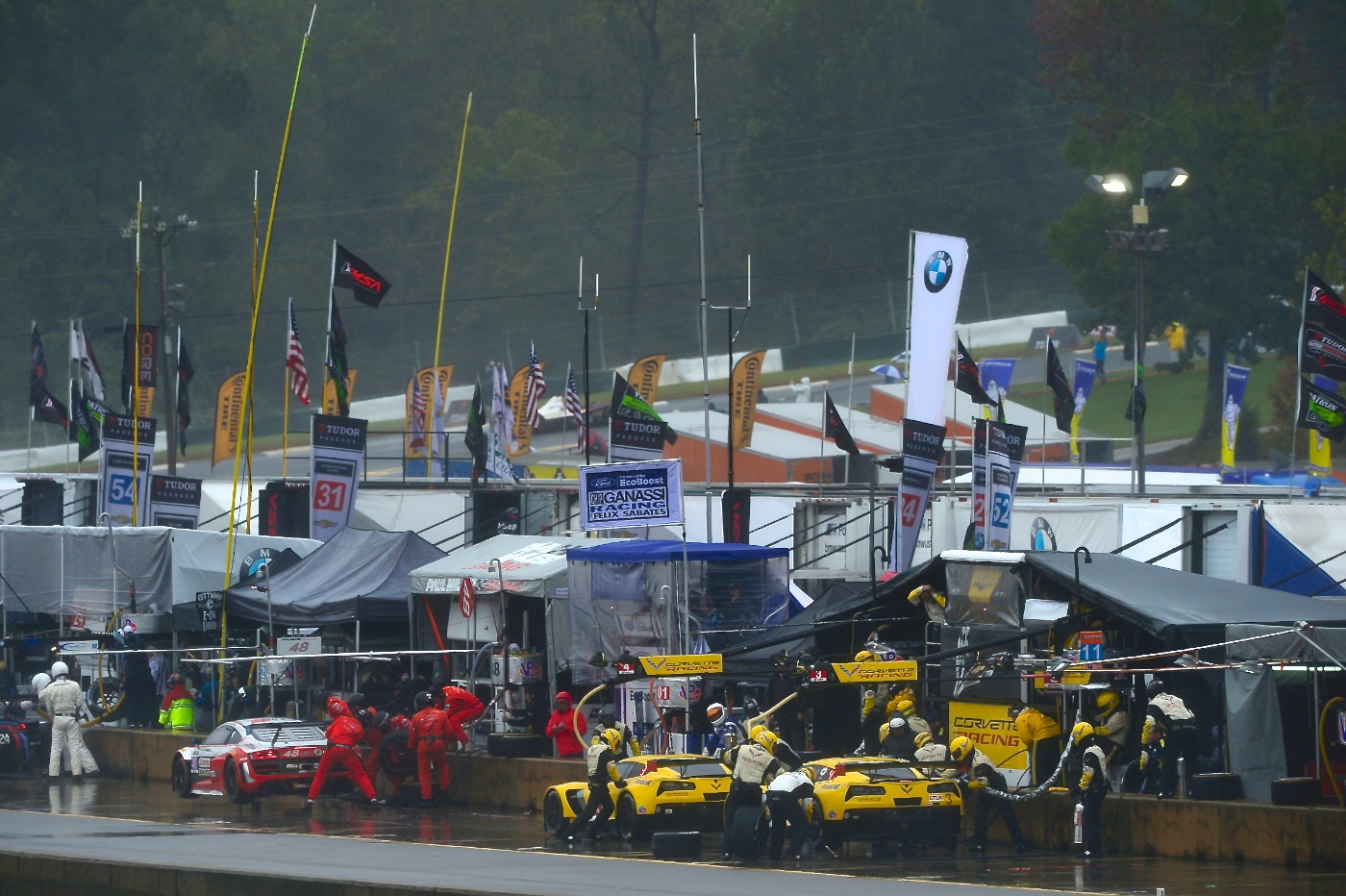 petit le mans race gallery jan magnussen. Black Bedroom Furniture Sets. Home Design Ideas